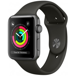 Apple Watch Series 3 38mm Space Gray Aluminum Case with Gray Sport Band (MR352)